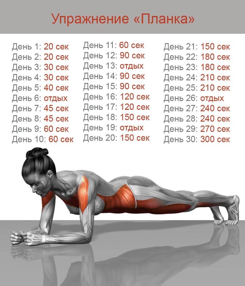 упражнения чтобы похудеть за 5 дней