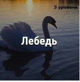 000769536_m.jpg