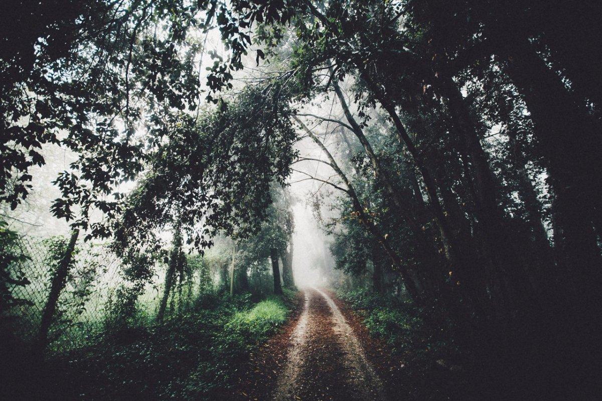 картинки о чем плачет природа больше фокусное расстояние