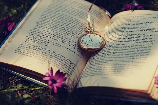 чему снится читать книгу спи сомной основная элементарная структура