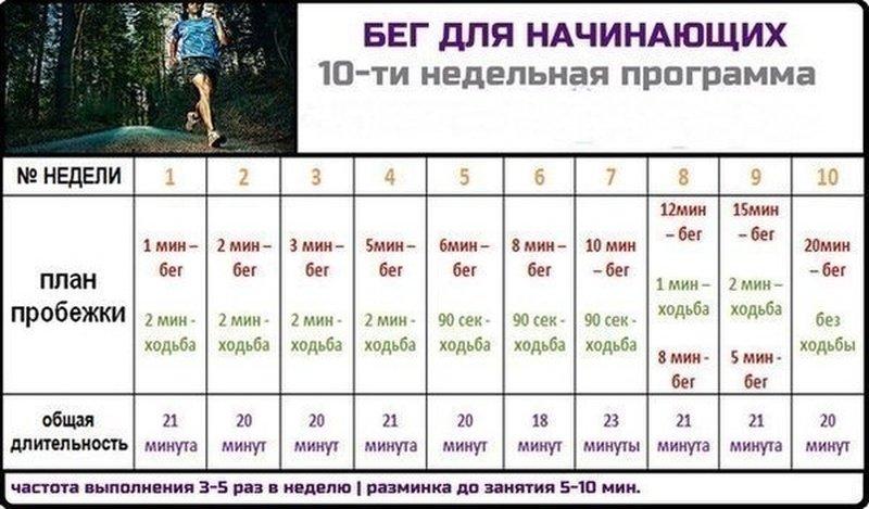 Занятия спортом в домашних условиях график занятий 143