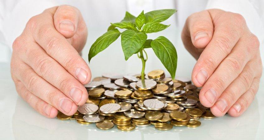 Как выйти на стабильный доход?